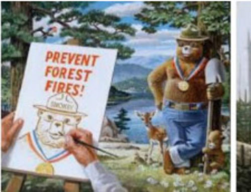 Rethinking Smokey Bear